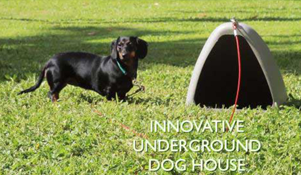The World's First Underground Dog House Miller Petproducts Dogeden