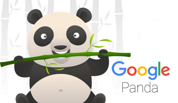 Things to know about Google Panda before having a website designed